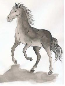 chevalbois