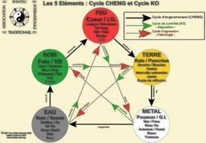 shema5elementsecoleshiatsuinternational